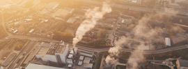 Article Alert: Carbon Transparency